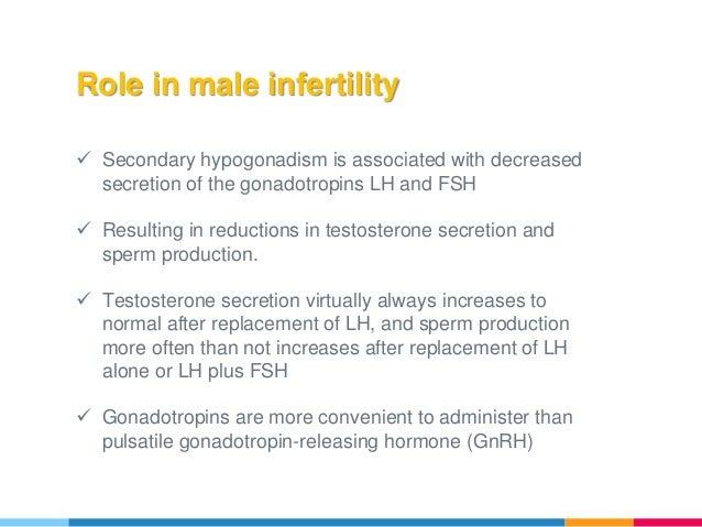 Gonadotropins for male infertility (spermatogenesis)