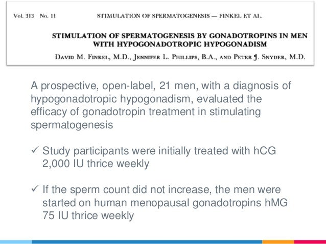 Gonadotropins for male infertility (spermatogenesis)
