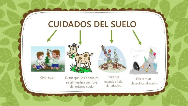 Cuidados del medio ambiente for 5 cuidados del suelo