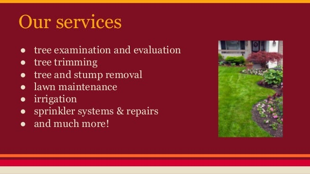 Gonzalez Lrc Your Landscaping And Tree Service Company