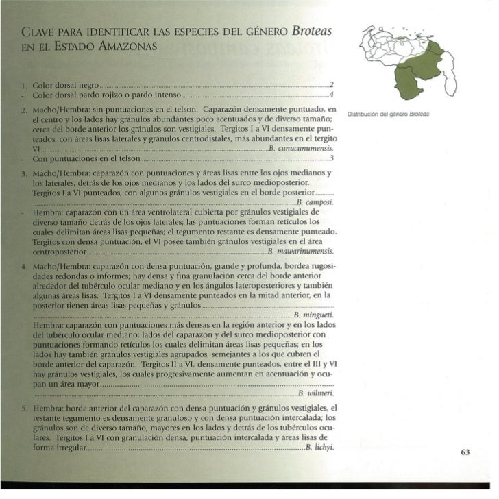 Guía de los Escorpiones de Venezuela - González Sponga (1992)