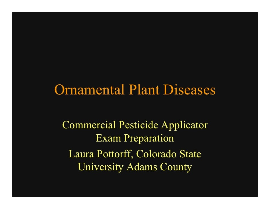 Ornamental Plant Diseases   Commercial Pesticide Applicator         Exam Preparation   Laura Pottorff, Colorado State    U...