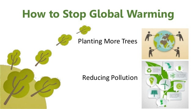 Plant trees - Reduce global warming