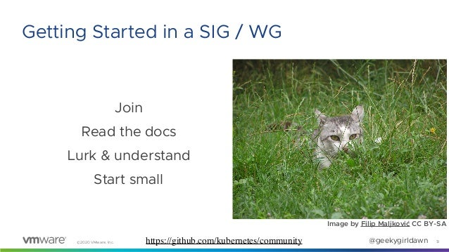 ©2020 VMware, Inc. @geekygirldawn Join Read the docs Lurk & understand Start small Image by Filip Maljković CC BY-SA 13 Ge...