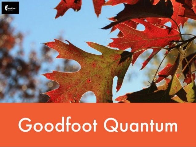 Goocltoot Quantum