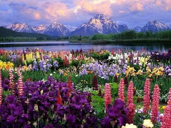 trifles literary analysis essay macbeth act scene essay essay on beauty of nature
