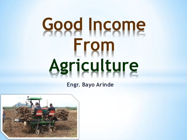 Engr. Bayo Arinde Good Income From Agriculture
