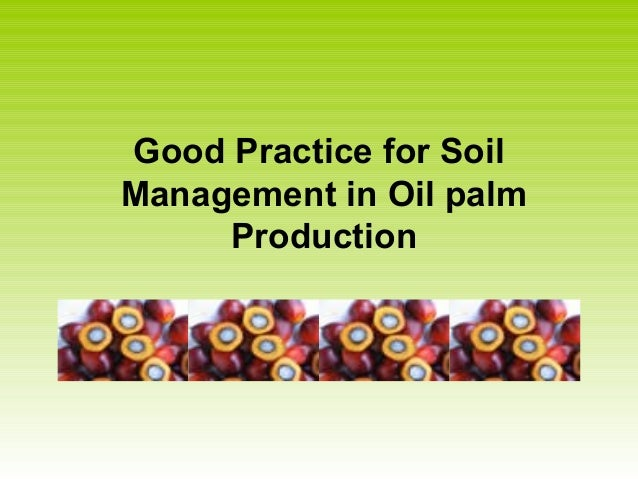 Good Practice for Soil Management in Oil palm Production