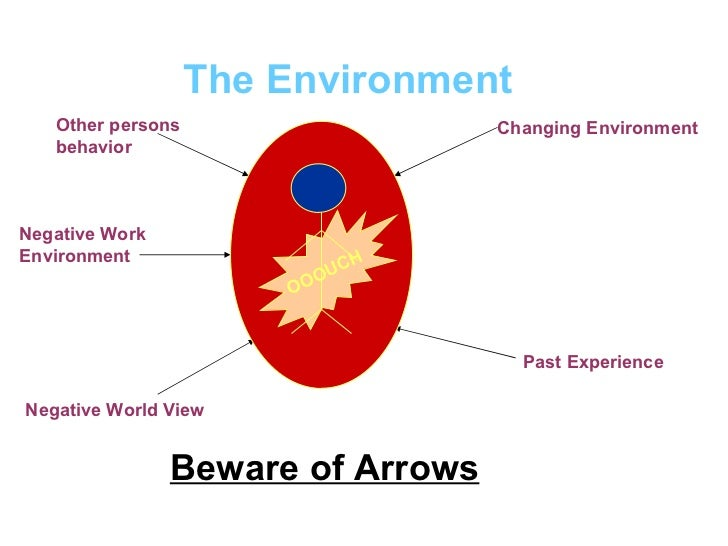 The Environment Beware of Arrows Other persons behavior Negative Work Environment Negative World View Changing Environment...