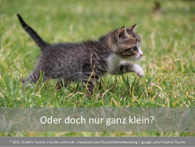 ® 2015  Cathrin Tusche   tusche-online.de   facebook.com/TuscheOnlineMarketing   google.com/+Cathrin Tusche Oder doch nur ...