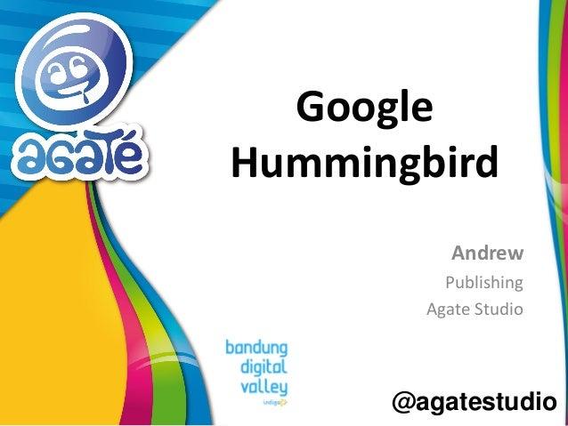 @agatestudio Google Hummingbird Andrew Publishing Agate Studio