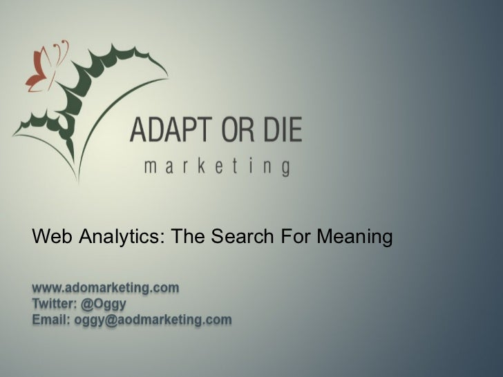 Web Analytics: The Search For Meaning