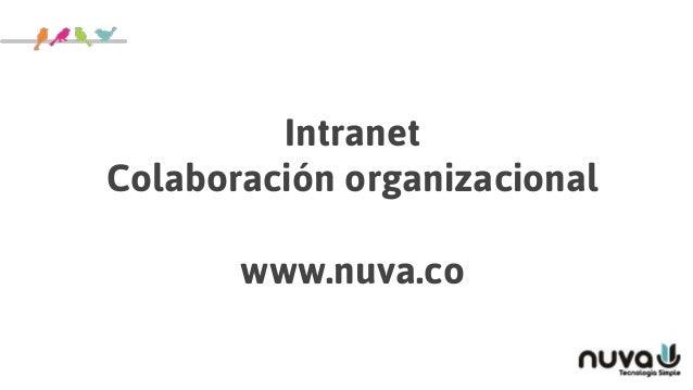 Intranet Colaboración organizacional www.nuva.co