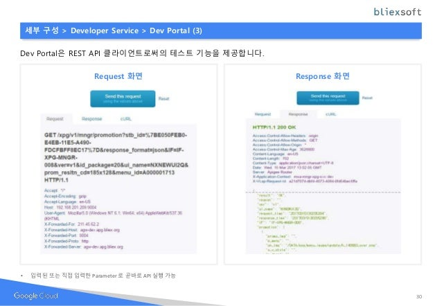 세부 구성 > Developer Service > Dev Portal (3) Dev Portal은 REST API 클라이언트로써의 테스트 기능을 제공합니다. Request 화면 Response 화면 • 입력된 또는 직접...