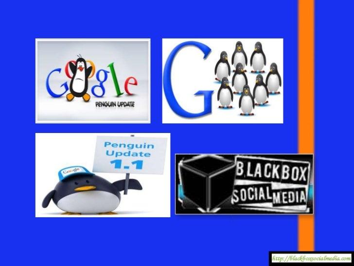 Google Penguin SEO Exposed!
