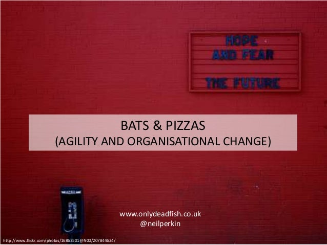 www.onlydeadfish.co.uk @neilperkin http://www.flickr.com/photos/16863501@N00/207844624/ BATS & PIZZAS (AGILITY AND ORGANIS...