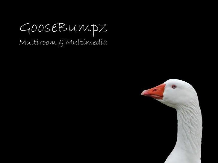 GooseBumpz Multiroom & Multimedia