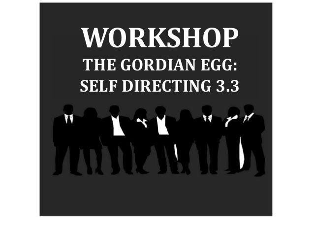 WORKSHOP THE GORDIAN EGG: SELF DIRECTING 3.3