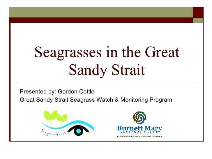 Seagrasses in the Great Sandy Strait Presented by: Gordon Cottle Great Sandy Strait Seagrass Watch & Monitoring Program