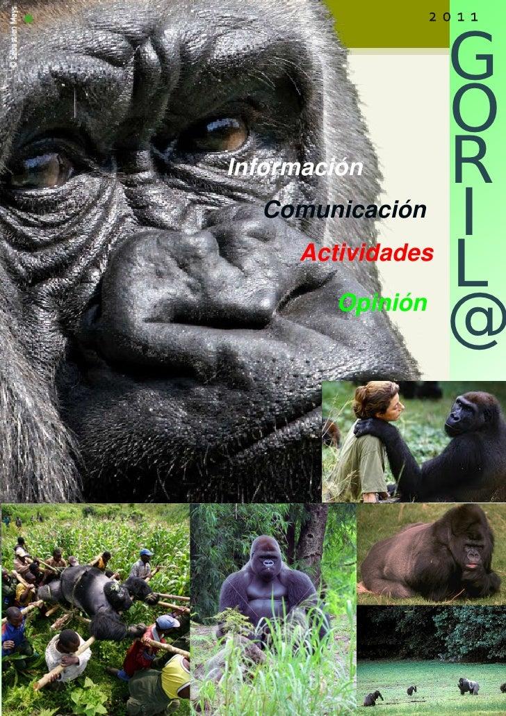 g                   o                   r                   iInformación                   l  Comunicación                ...