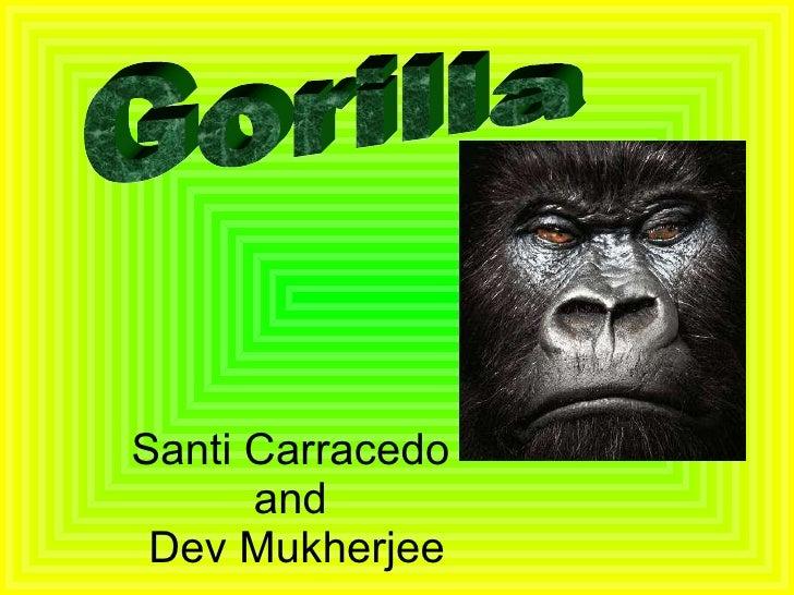 Santi Carracedo  and  Dev Mukherjee Gorilla