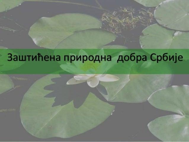 Заштићена природна добра Србије