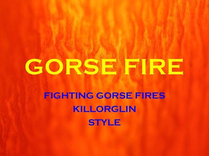 FIGHTING GORSE FIRES KILLORGLIN STYLE GORSE FIRE