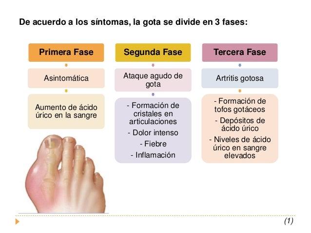 Acido urico gota artritis alimentos no permitidos acido urico planta acido urico que remedio - Alimentos ricos en purinas acido urico ...