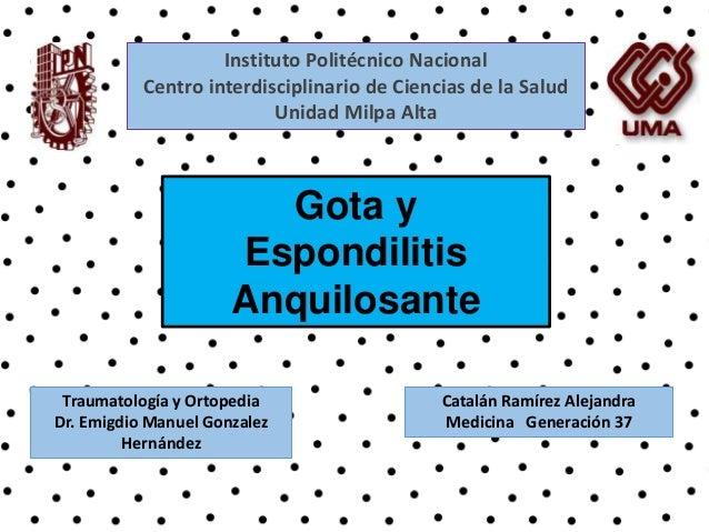 Instituto Politécnico Nacional  Centro interdisciplinario de Ciencias de la Salud  Unidad Milpa Alta  Gota y  Espondilitis...
