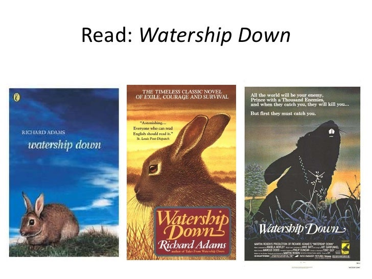 Read: Watership Down<br />