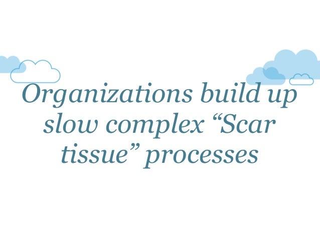 "Organizations build up slow complex ""Scar tissue"" processes"