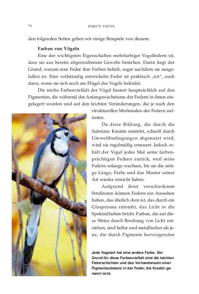 Charmant Blaue Vogel Färbung Seite Bilder - Dokumentationsvorlage ...