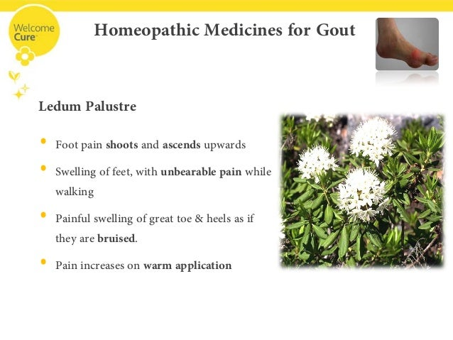 home treatment for gout in foot what is uric acid serum test gout cause kidney disease