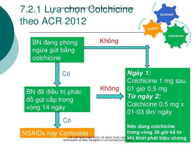7.2.1 Lựa chọn Colchicine theo ACR 2012 Colchicine Corticoid BN đang phòng ngừa gút bằng colchicine BN đã điều trị phác đồ...