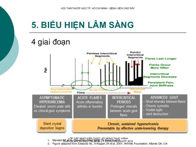 5. BIỂU HIỆN LÂM SÀNG 4 giai đoạn 1. Mandell BF et al. CleveClinJ Med 2008; 75 Suppl 5:s5-8 2. Figure adapted from Edwards...
