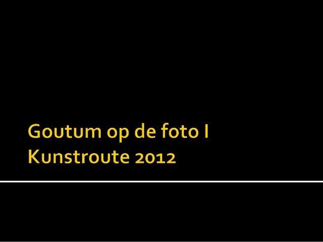 Goutum op de foto 2012 1