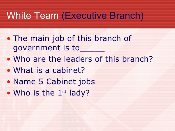 what are the main jobs of the executive branch