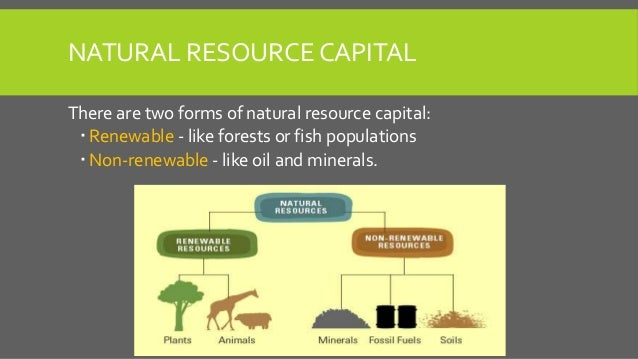 The Cost of Production and Energy Return of Oil Sands