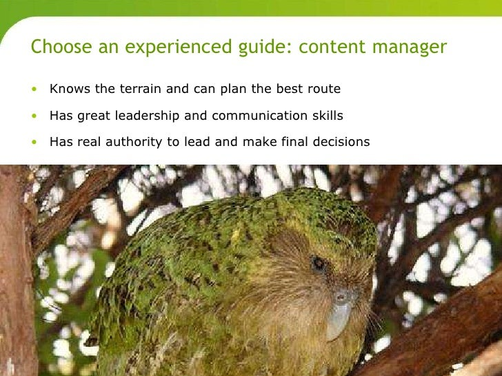 Choose an experienced guide: content manager       • Knows the terrain and can plan the best route       • Has great leade...