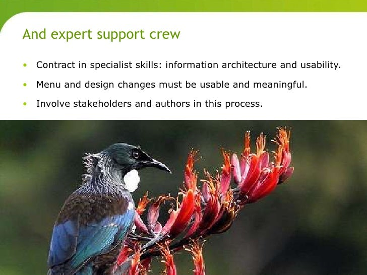 And expert support crew       • Contract in specialist skills: information architecture and usability.       • Menu and de...