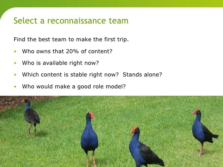 Select a reconnaissance team       Find the best team to make the first trip.       • Who owns that 20% of content?       ...
