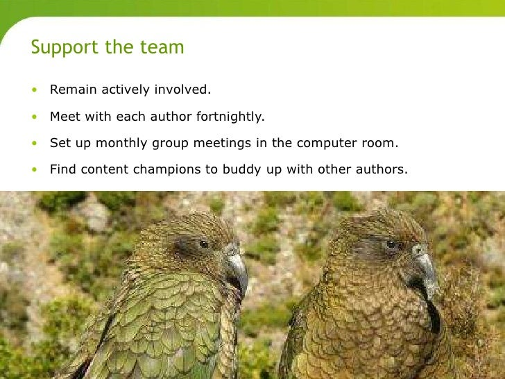 Support the team       • Remain actively involved.       • Meet with each author fortnightly.       • Set up monthly group...