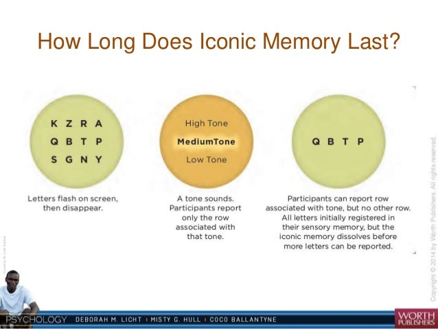 what is iconic memory