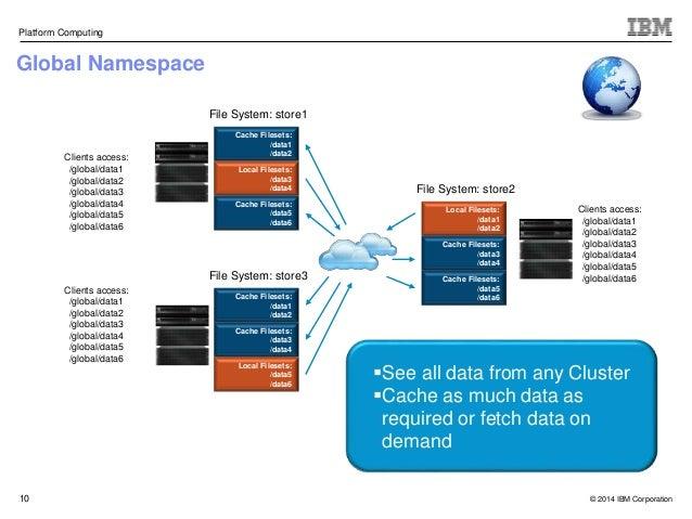 Ibm Platform Computing Elastic Storage