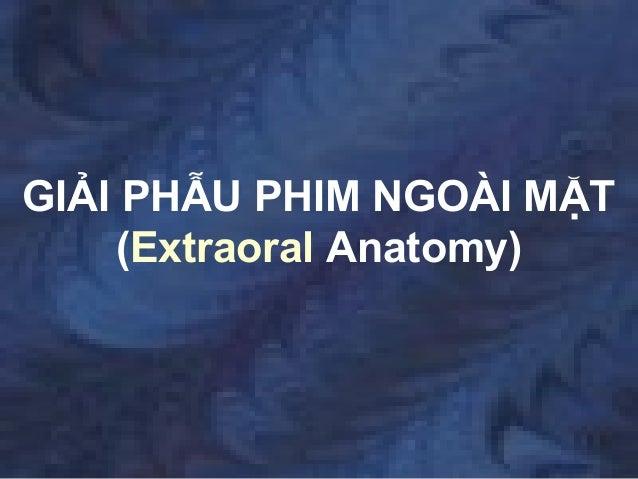 GIẢI PHẪU PHIM NGOÀI MẶT(Extraoral Anatomy)