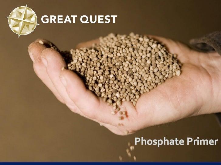 Strategic importance of Phosphorus (P) Essential nutrient for all life forms              Phosphorus-deficient wheat plan...