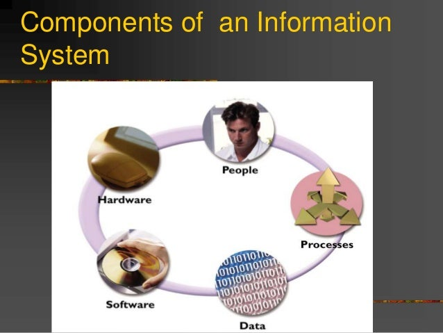management information systems and its importance Businesses use management information systems to collect, interpret and analyze data as an aid in their decision-making processes.