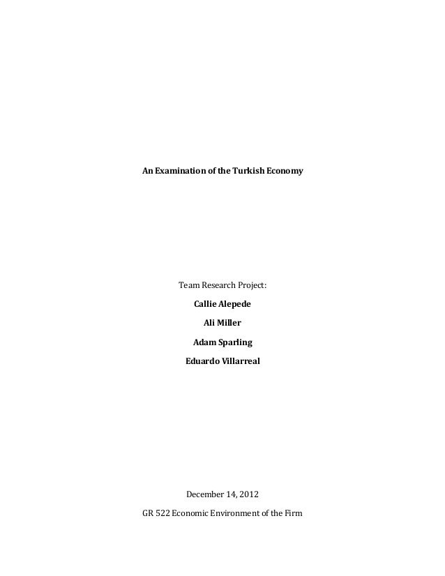 An  Examination  of  the  Turkish  Economy                  Team  Research  Project:   Calli...