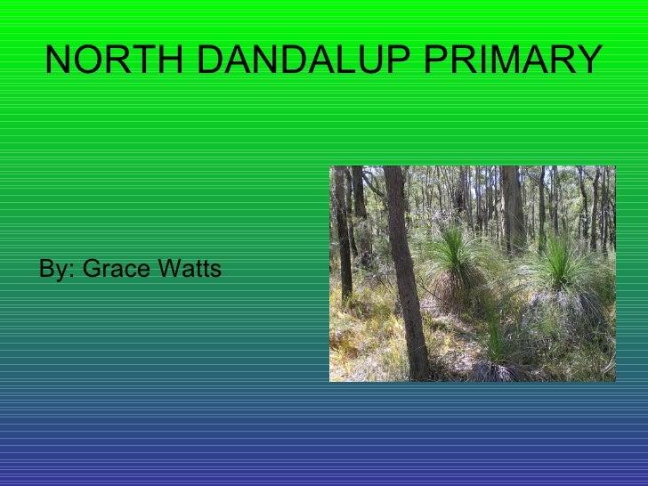 NORTH DANDALUP PRIMARY <ul><li>By: Grace Watts </li></ul>