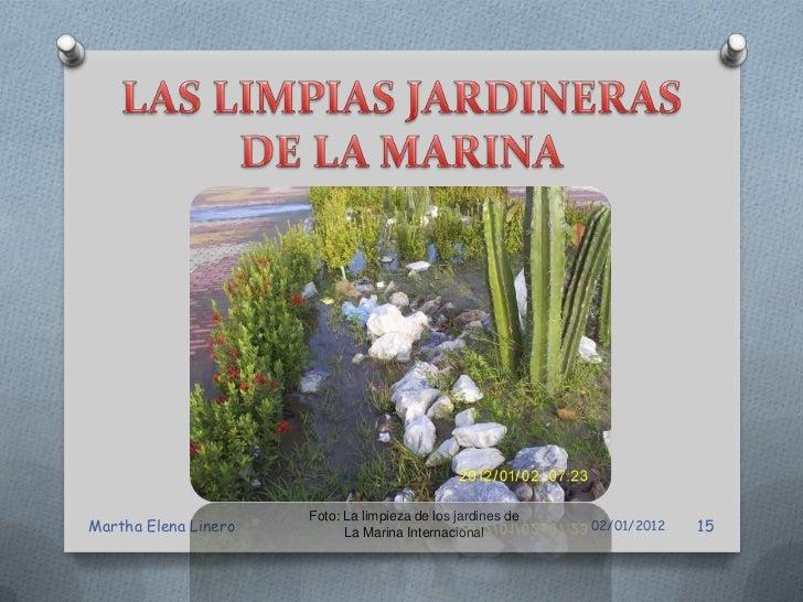 Foto: La limpieza de los jardines deMartha Elena Linero         La Marina Internacional          02/01/2012   16